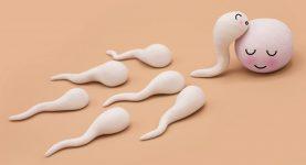 Alergia na spermie tabletky na zlepšenie erekcie